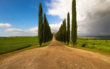 Toscana,Beautiful road,italy