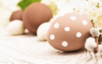 цветы,Весна,eggs,happy,spring,decoration,яйца,Easter
