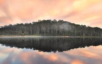 пембертон, beedelup lake,Karri forest,австралия