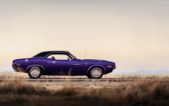 1970,Dodge challenger,lunchbox photoworks