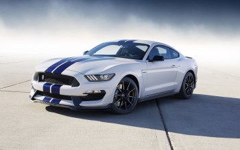 gt350,shelby,2016