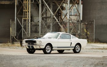 shelby,1966,gt350,форд