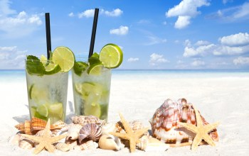drink,cocktail,Seashells,beach,lime,Mojito,мохито,ракушки