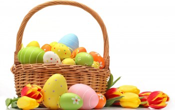 eggs,корзина,яйца,tulips,basket,colorful,Easter