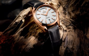 baselworld,2013 - the seamaster aqua terra day-date