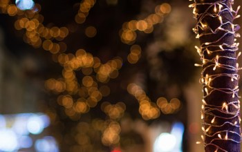 bokeh,christmas,Brownish lights