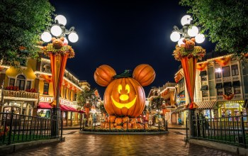 Color,Holidays,children,orange,halloweens,pumkins,for,happy,mouse