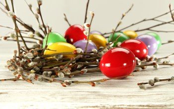 Easter,яйца,верба,willow twig,eggs