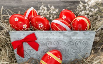 Red,яйца,Easter,eggs