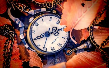 autumn,hands,clock,leaves,dial