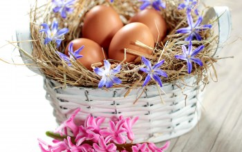 Весна,spring,eggs,Easter,basket,яйца,delicate,pastel