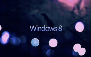 windows,eight,dark
