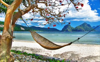 beautiful,tree,summer,bed,landscape,mountains,Tropical relax