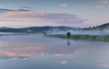 morning,mist,sky,reflection,wyoming,oxbow bend,National park,clouds,forest
