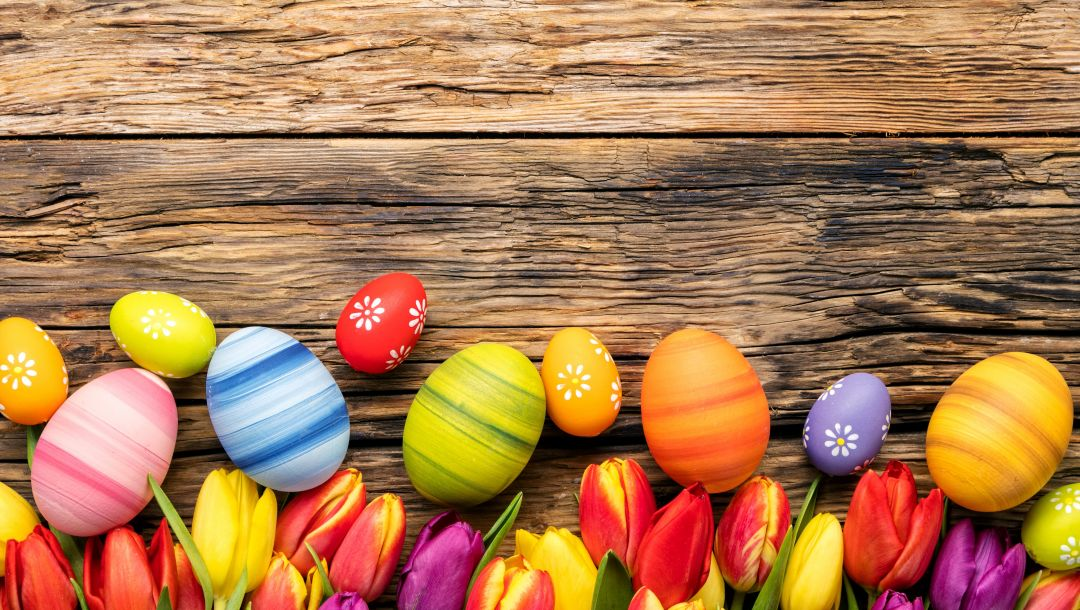 eggs,happy,яйца,wood,colorful,tulips,Easter,decoration,spring