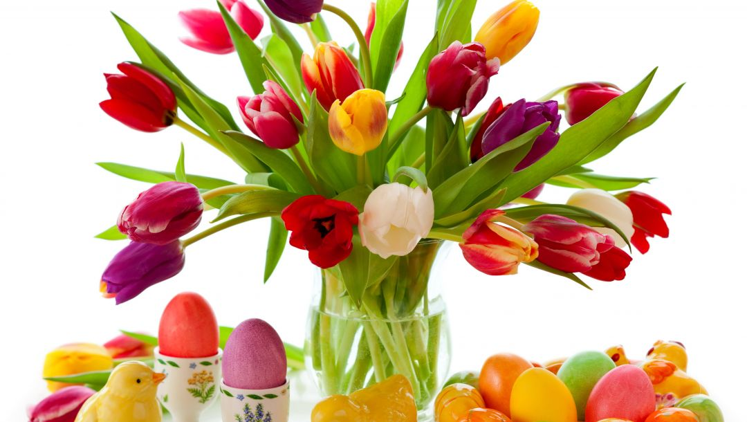 eggs,spring,Весна,tulips,Easter,цветы,colorful
