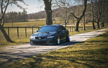 stance,accord,acura tsx