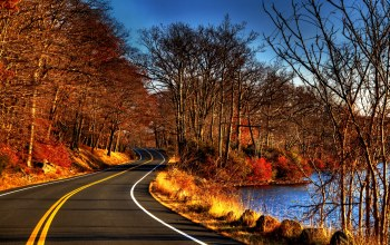 view,water,river,autumn,forest,fall,trees,Road,leaves
