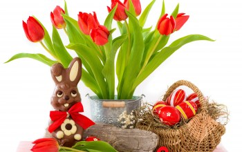 tulips,eggs,bunny,Red,Easter,яйца