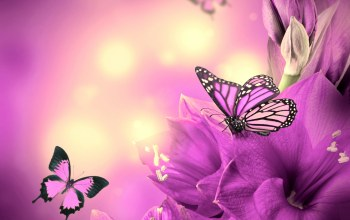 butterflies,Purple,цветы