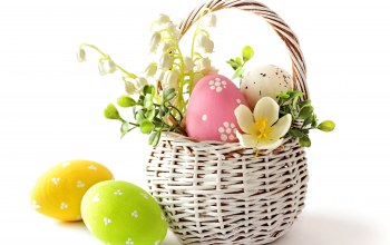 delicate,pastel,Весна,яйца,basket,spring,eggs,Easter