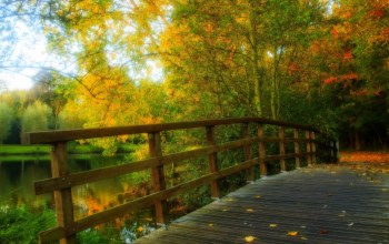 autumn,view,park,water,forest,alley,bridge,walk,fall,leaves,river,trees