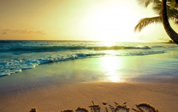 ocean,palm,sand,beach,Sunset,coast,tropical,paradise,vacation,blue,emerald,summer