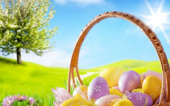 eggs,sunshine,Easter,spring,grass,blue sky,basket,Camomile,meadow