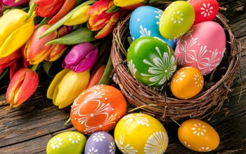 яйца,tulips,Easter,spring,happy,цветы,decoration,eggs