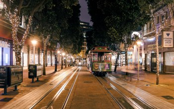 san francisco,tree,francisco,trolley,powel,california,ca,lights,street