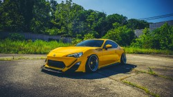 low,yellow,fr-s,summer,Scion,stance,ligth