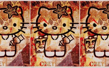 obey,hello,Kitty