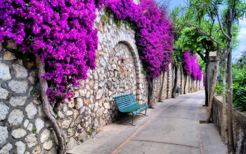 beautiful,italy,trees,streets,красивый,bench