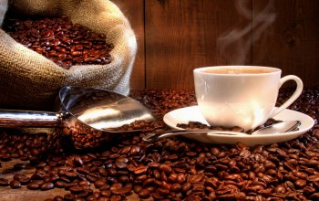 coffee beans,coffee,cup,White