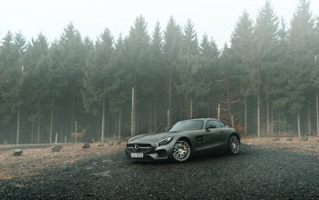 forest,grey,gt s,supercars