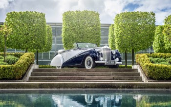 1952,rolls-royce,dawn drophead
