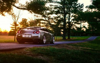 summer,grass,rear,Road,r35,back