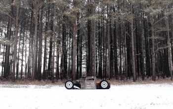 snow,rat,фольксваген,рэт,forest,Volkswagen,rod