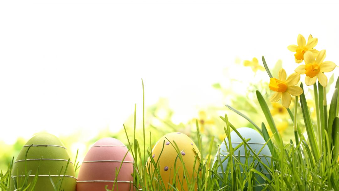 цветы,eggs,spring,Easter,яйца,Весна,decoration,happy
