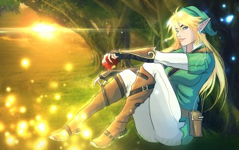 эльф,link,legend of zelda