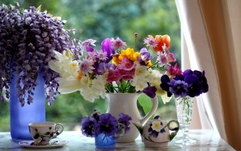 Bouquets,pitcher,cup,glass,Window,goblet