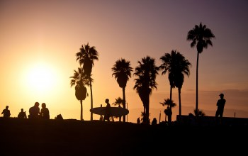 Surf ,Sunset,summer,palm,vence beach,los angeles,california