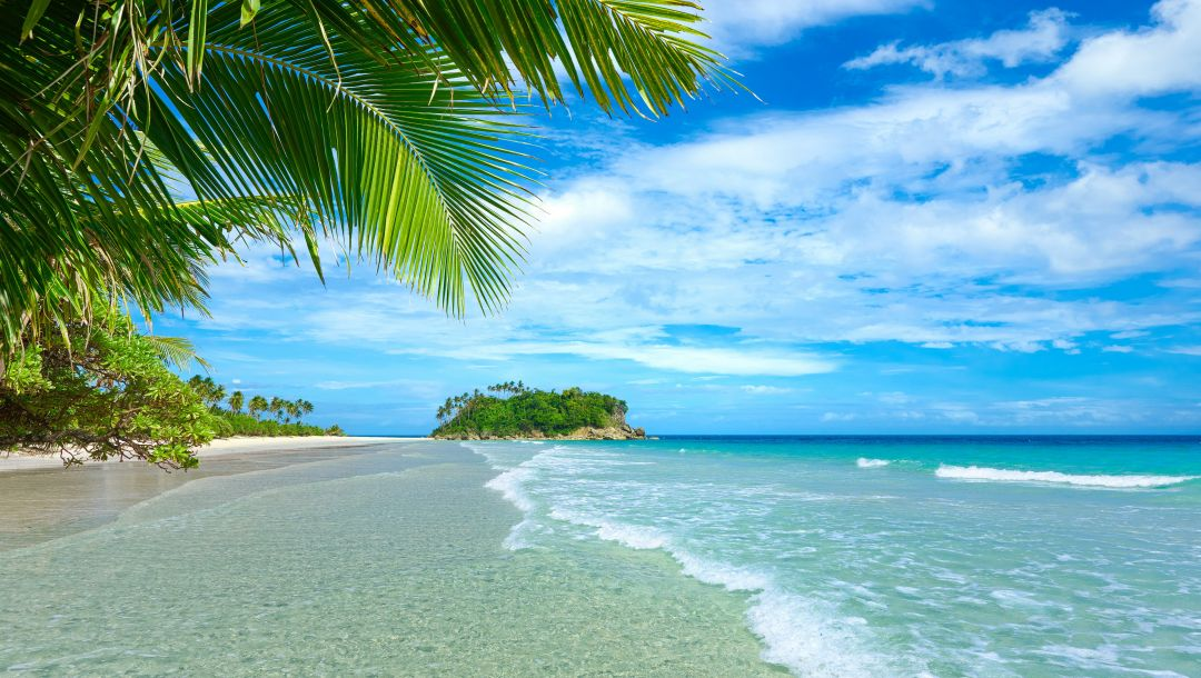 beach,vacation,paradise,лето,sand,palms,tropical,summer