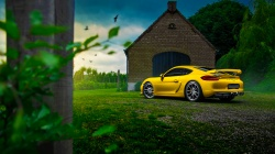 car,Color,cayman,porsche,gt4,summer,yellow,nature,rear