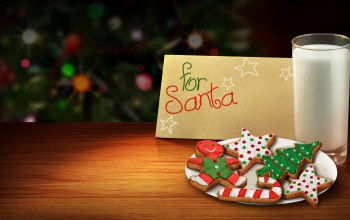 colors,cool,christmas tree,beauty,christmas,colorful,christmas cookies,for santa,beautiful