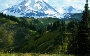 washington,Mount baker-snoqualmie national forest