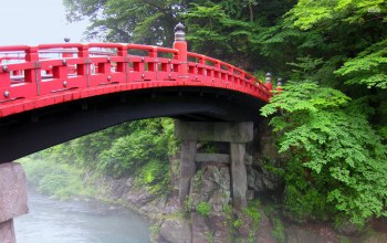 futarasan,forest,river,bridge
