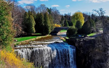waterfall,river,canada,tree,ontario