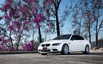 M3,Bmw,tree,wheels,White