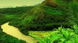 mountain,water,forest,green,river,tree